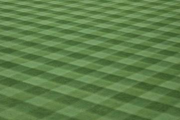major league baseball field grass