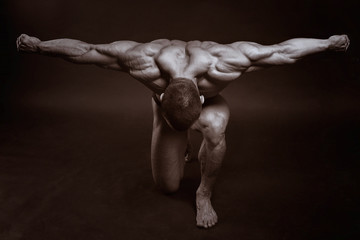 The muscular male