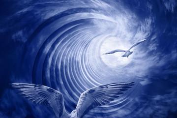 Spirale mit Vögel