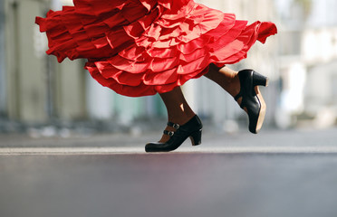 Flamenco Dancer red dress dancing shoes