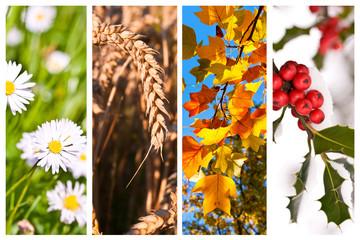 Collage horizontal 4 saisons