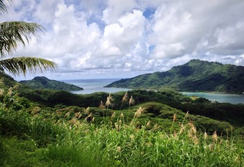 Paradise in South Pacific