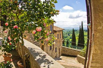 Roses at balcony in San Gimignano, Tuscany landscape background