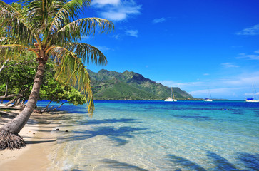 Turquoise waters off Moorea in Tahiti, French Polynesia