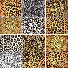 Animal skin fur vector pack leopard zebra