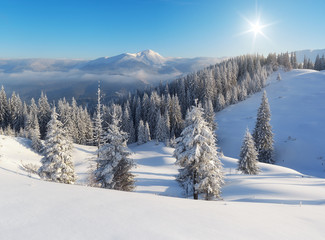 Winter day in the mountains