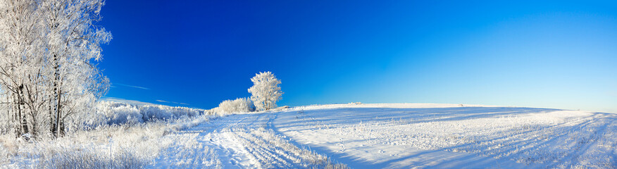 rural winter landscape a panorama with the blue sky, a field and