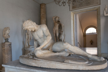 Famous Dying Gaul statue in Capitoline Museum, Rome
