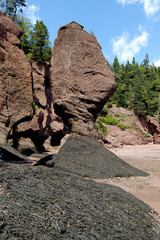 Hopewell Rocks in der Bay of Fundy, Kanada