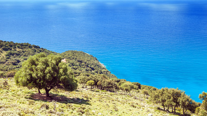 Sea and forest view landscape during the summer, Kefalonia Greece