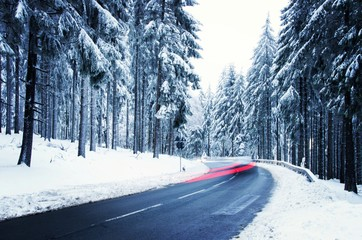 Winter forest. Driving through forest road in winter.
