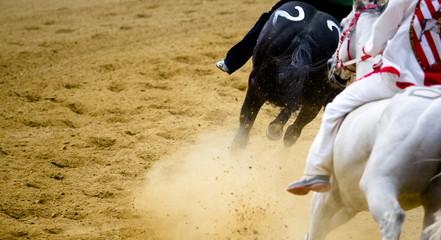 Palio di Asti con corsa dei cavalli al galoppo