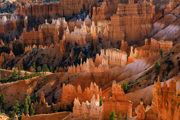 Bryce Canyon National Park, Utah-Queens Garden Trail 10-16 SG1444
