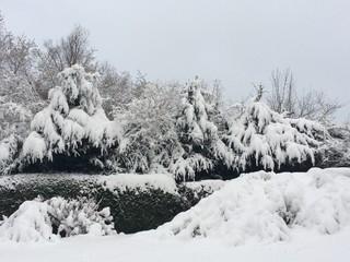 Garten ist tief verschneit