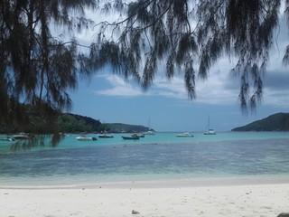 Riff bei Port Launay, Seychellen