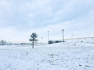 Winter monichrome landscape