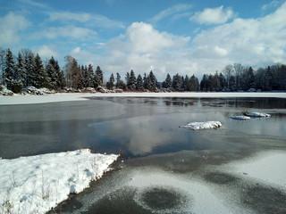 Winterlandschaft am Waldsee Waldteich mit Schnee und Eis taut auf