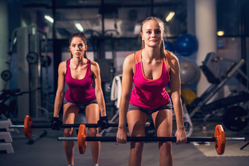 Portrait close up view of two young fitness motivated attractive healthy sporty active slim girls crouching while doing exercises and warming with barbells in the gym.