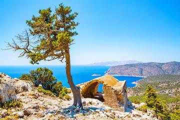 Historic ruin and pine tree, Mediterranea Sea, Rhodes Island, Greece