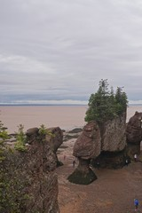Fundy National Park, New Brunswick, Canada: Tourists walk among the exposed Hopewell Rocks on the Bay of Fundy at low tide.