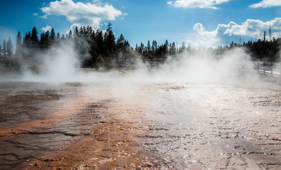 Landscape view of Yellowstone National Park (Wyoming)
