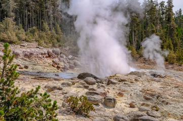 Hot thermal spring Yellowstone