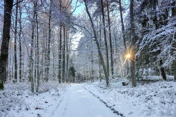 zimowy krajobraz Warmii-Polska