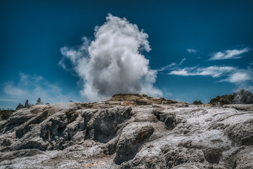 Fountain of steam from geyser in New Zealand