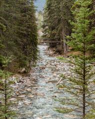 Johnston Canyon trail in Banff National Park , Alberta, Canada