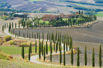A winding road with poplars near an old Italian manor. Autumn in Tuscany