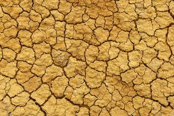 Dry cracked brown earth surface texture
