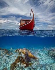 Maldivian exotic diving boat and sea turtle underneath in water background underwater split shot