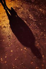 padać światło i cień