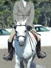 pony51