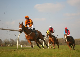 race horses passing at speed