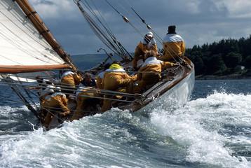 Fife Regatta / Schottland / The Lady Anne