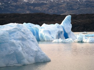Floating icebergs in Argentina Lake
