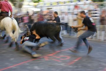 Spectacle taurin : course de taureau
