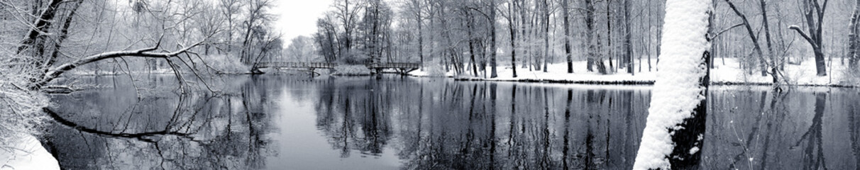 Lake in winter panorama