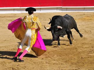 Matador facing Bull