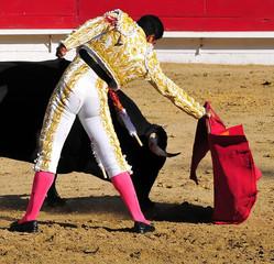 Matador Leading Bull