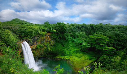 Lush Green Landscape Waterfall on the Hawaiian Islands