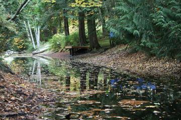 Leśny Potok
