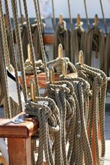 Liny jachtu
