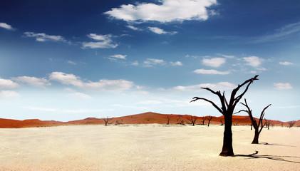 Einsame Wüste