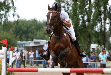 Pferdespringreiten01