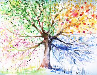 Drzewo czterosezonowe