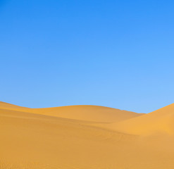 sand dune in sunrise in the desert