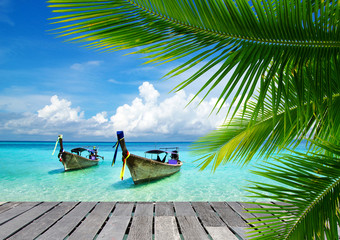 morze tropikalne