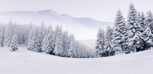 Panorama mglisty zimowy krajobraz w górach